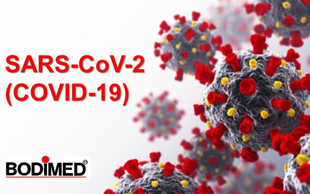 Laboratory testing for coronavirus disease 2019 (COVID-19)